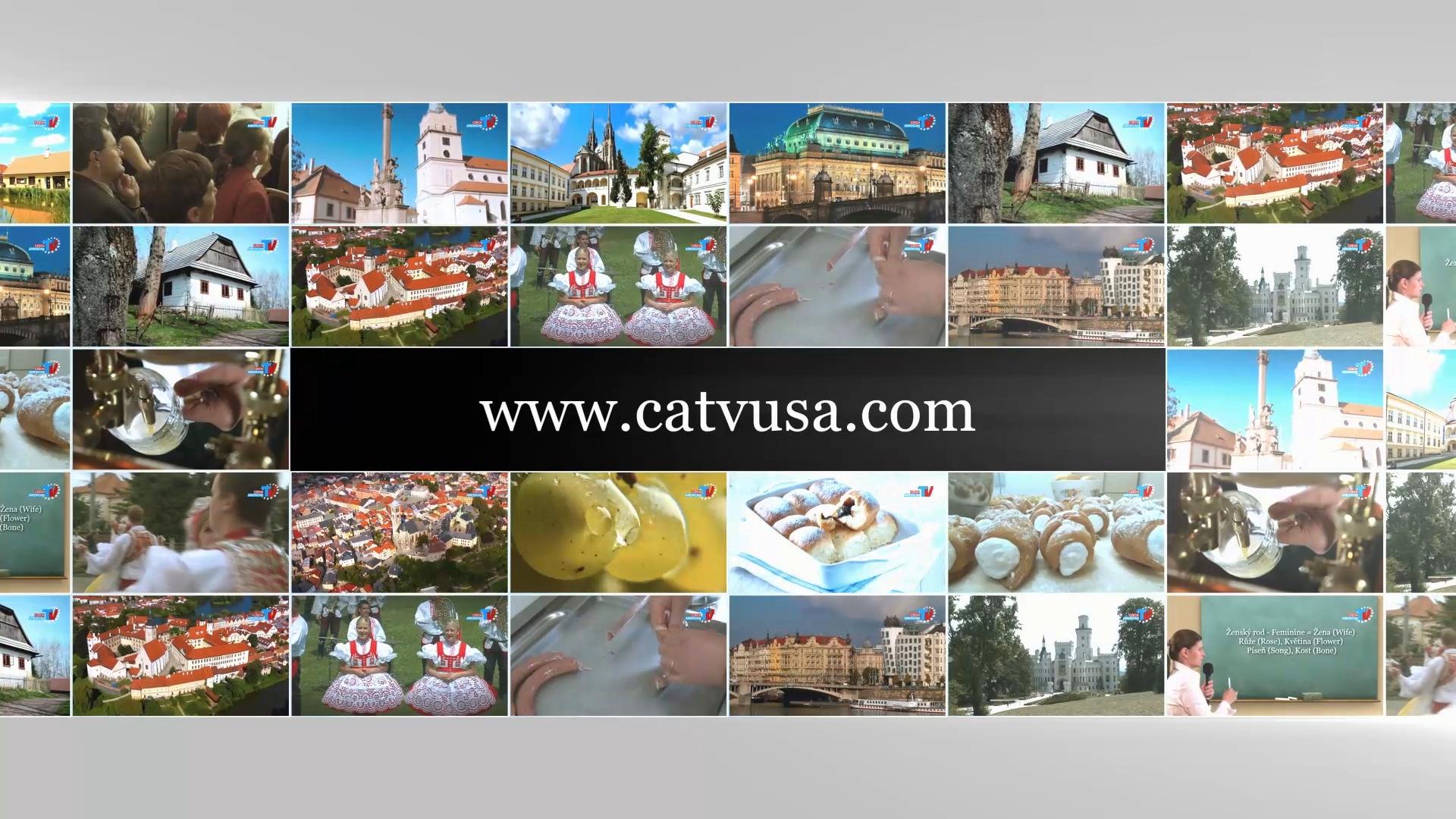 catvusa.com